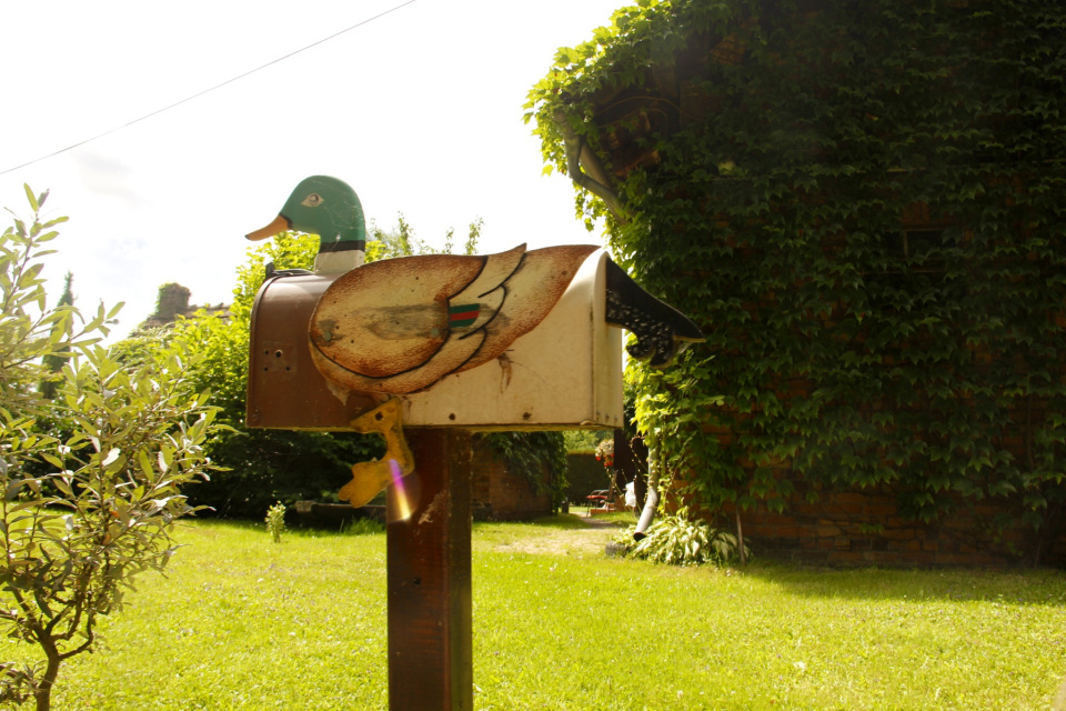 Heute keine Liebesbriefe - Entenbriefkasten