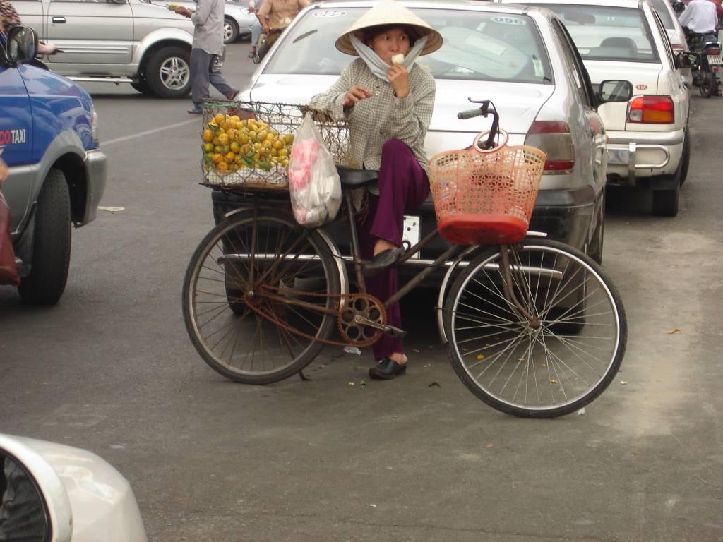 vietnam f r einsteiger von ho chi minh city zum mekong um die welt mit mir der. Black Bedroom Furniture Sets. Home Design Ideas
