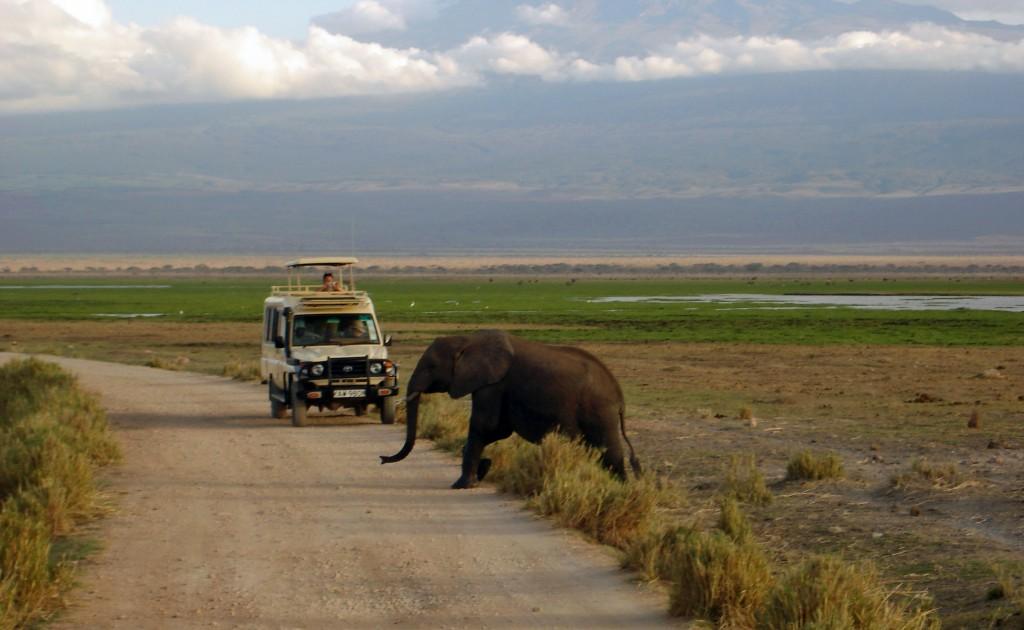 Fotoreise Kenia: Vorsicht Elefant kreuzt! © Marita Persian