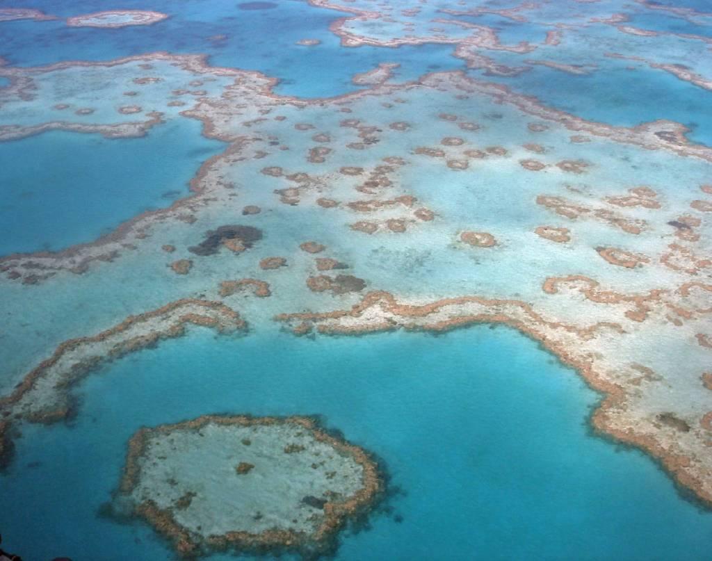 Das Great Barrier Reef in Australien ist das größte Korallenriff der Erde und gehört zun UNESCO Weltnaturerbe @Foto: M.Persian
