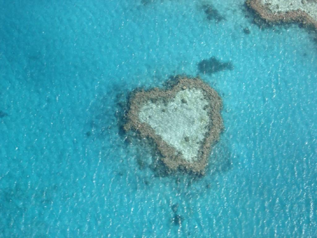 Das Great Barrier Reef in Australien aus dem Helikopter fotografiert. Unglaublich! Ein Riff in Herzform, na, wenn das kein Glück bringt! @Foto: M. Persian
