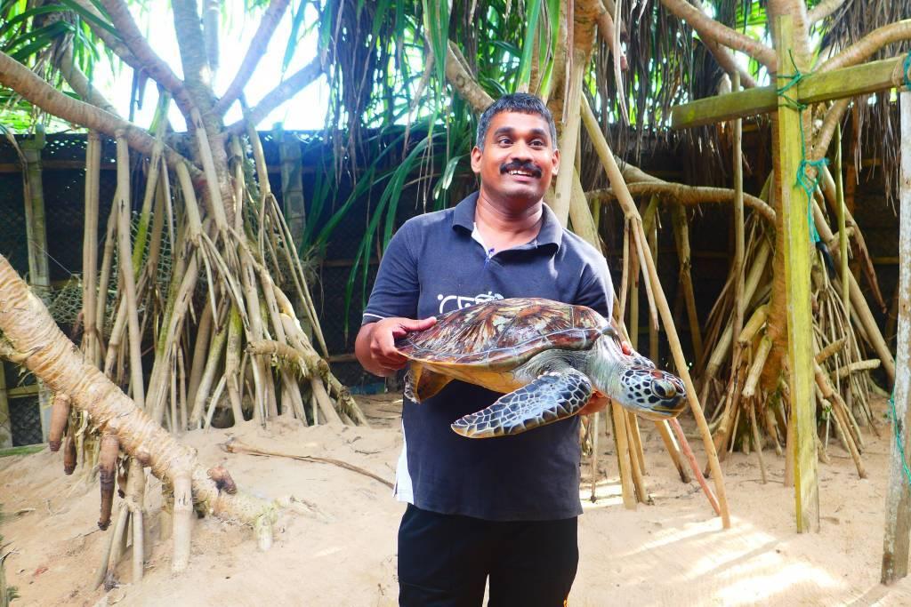 Daminda, der Schildkrötenretter mit seiner gepanzerten Freundin Monika. Neben der Schildkröten-Aufzucht werden auch verletzte oder gestrandete Tiere auf der Farm aufgepäppelt
