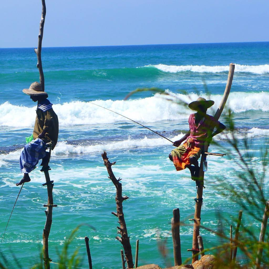 An der Südküste wird noch auf traditionelle Art geangelt. Dort sitzen die Fischer auf Stelzen im Wasser und angeln kleine Sardinen und Makrelen