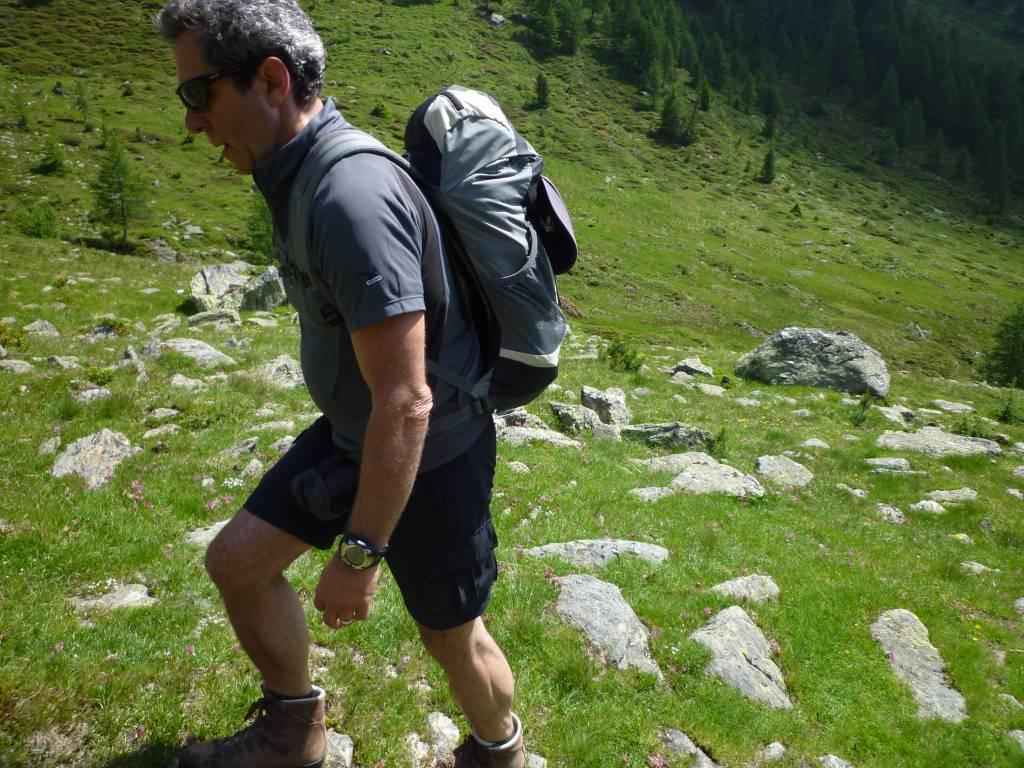 Über Felssteine und durch herrliche Wälder führen die markierten Wanderwege rund um Windischgarsten
