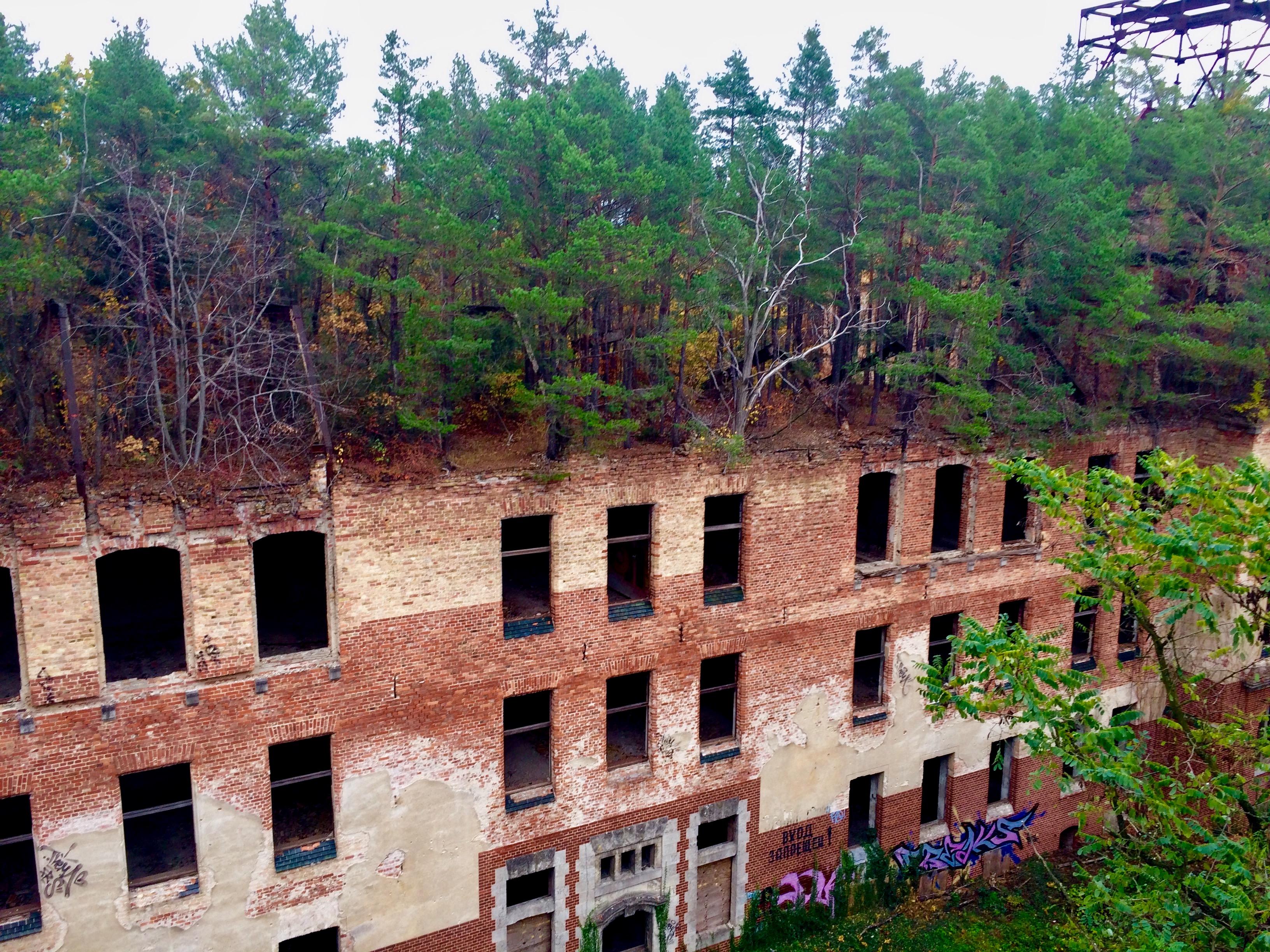 Ruinen zwischen Baumkronen