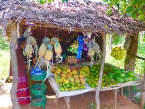 Obststand an der Straße nach Kandy