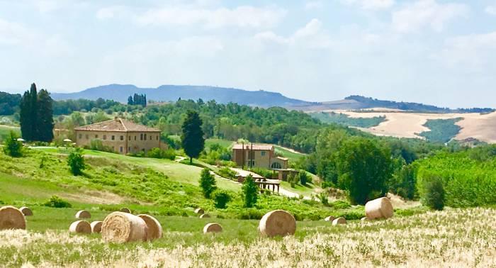 Sanft geschwungene Hügel, Weinreben, uralte Olivenbäume und Zypressen dicht an dicht - schon allein die Landschaft der Toskana ist Balsam für die Seele Foto: © M.Persian