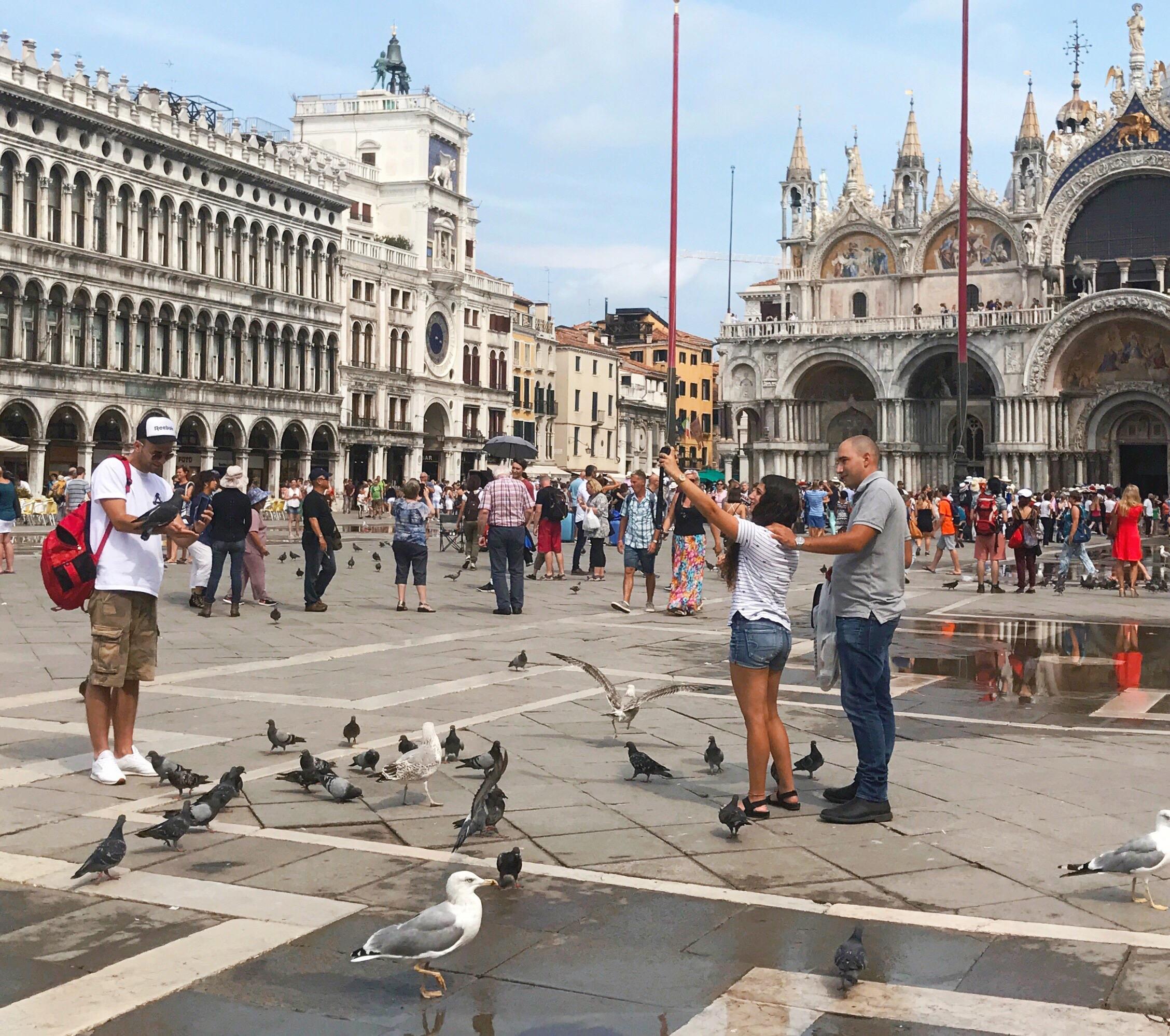 Post aus Venedig mit Selfies und Tauben