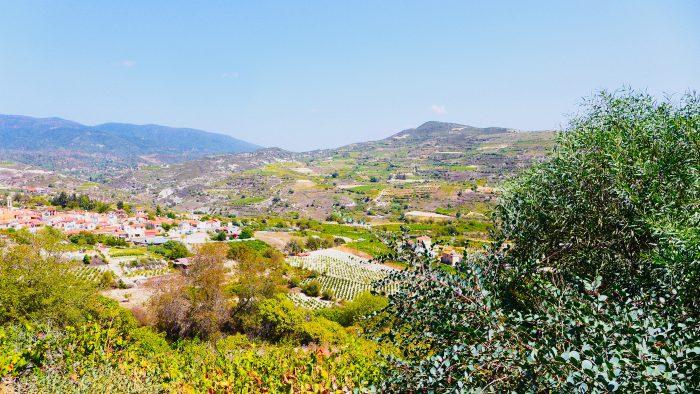 Arsos ist umgeben von Weinbergen. Ideal um Land und Leute kennenzuler und im Troodos-Gebirge zu wandern. Foto: mpersian